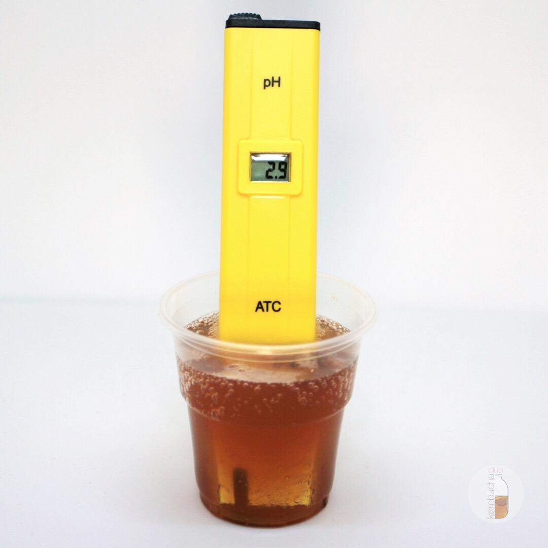 кислотность комбуча b-tea original