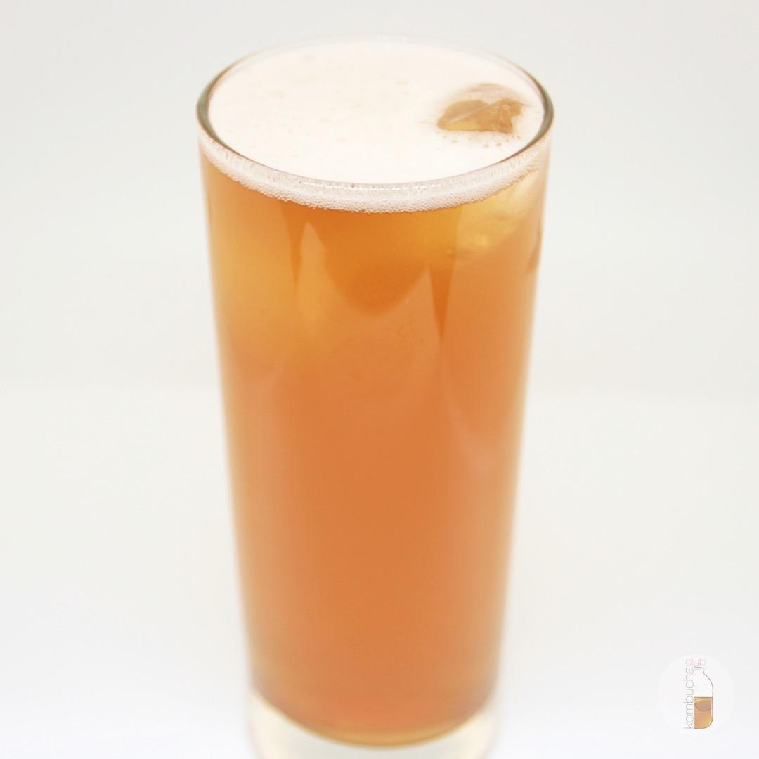 Чайный гриб Tru-Bru