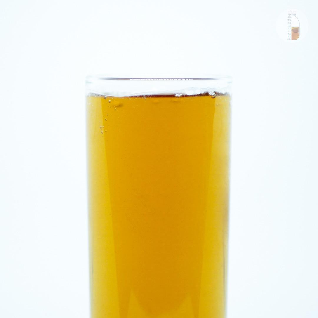 Absolute Nature «Kombucha-Classic» чайный гриб на иван-чае