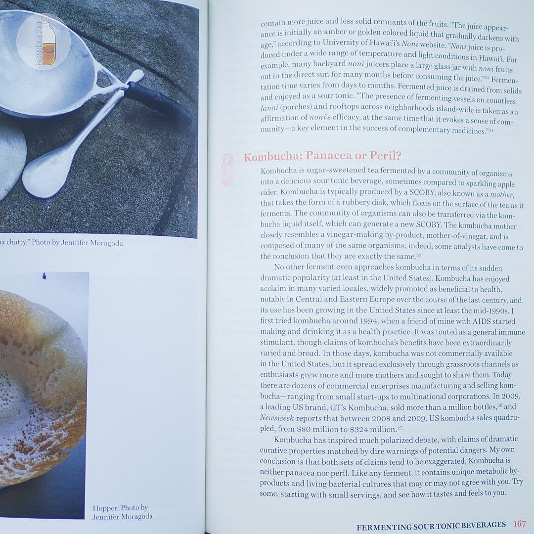 Книга The Art of Fermentation